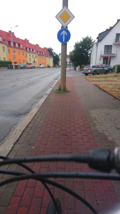 Hochbordradweg in Erfurt